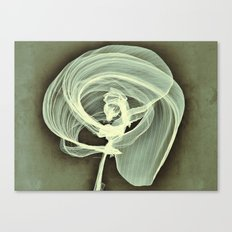 A Smooth Awakening Canvas Print