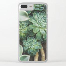Botanical Gardens Succulent #625 Clear iPhone Case