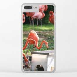 Flamingos by the Pond Clear iPhone Case