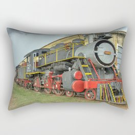 Trinidad Steam Rectangular Pillow