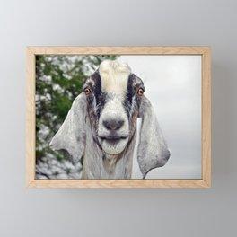 Billy Goat Framed Mini Art Print