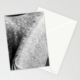 Horses Photography | White Mane Stationery Cards