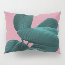 Ficus Elastica #11 #WildRose #decor #art #society6 Pillow Sham