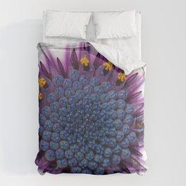 Stunning African Daisy Tropical Flower Macro Comforters