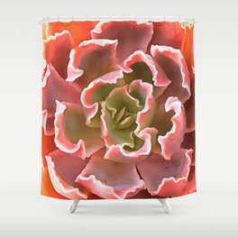 Living Coral Succulent Shower Curtain