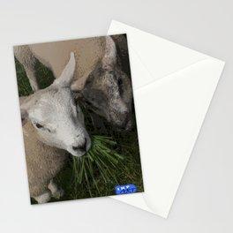 Feeding Sheep #Animal #Farm #Eating #Nomnomnom Stationery Cards