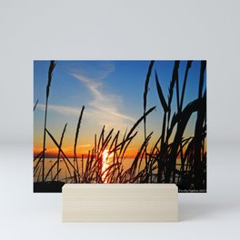 Sunset Through the Beach Grass Mini Art Print