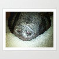 Snout! Art Print