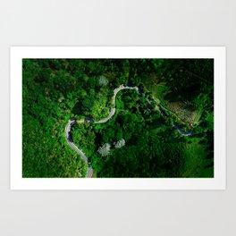 Jungle Roads Art Print