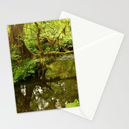 Rainforest Reflection Stationery Cards