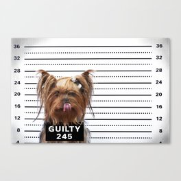 GUILTY! Canvas Print