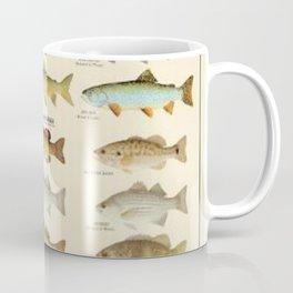 Illustrated Eastern Game Fish Identification Chart Coffee Mug