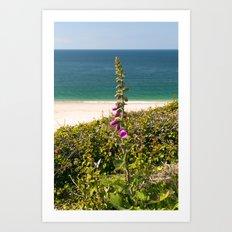 Foxglove On The Beach Art Print