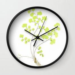 Maidenhair Fern Wall Clock