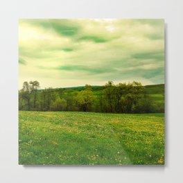 Green Grassland Metal Print