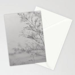 Of last year Stationery Cards