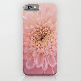 Perfect Petals iPhone Case