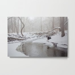 Snow Covered Bernese Metal Print