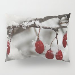 Finding Red Pillow Sham