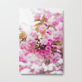 Pink Floral (Color) Metal Print