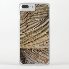 Bark Funnel Clear iPhone Case