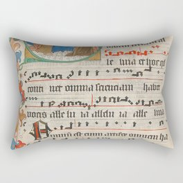 Gradual Rectangular Pillow