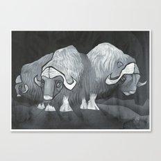 Muskoxen (third shift) Canvas Print