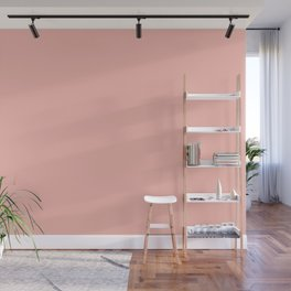 From The Crayon Box – Melon Pink - Pastel Pink Solid Color Wall Mural