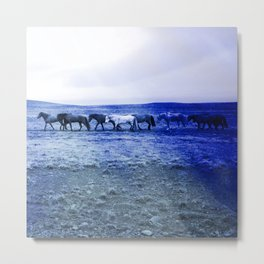 herd of horses blue photochrom tinted aesthetic wildlife art altered photography Metal Print
