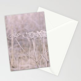 Pink Winter Parsley Still Life Stationery Cards
