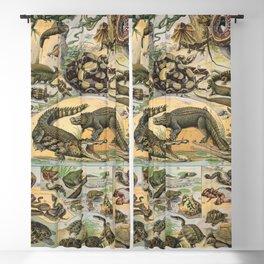 Adolphe Millot - Nouveau Larousse Illustré - Reptiles (1906) Blackout Curtain