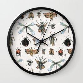 Entomology Wall Clock
