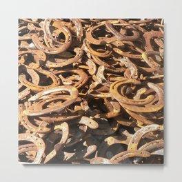 good luck - horseshoes Metal Print