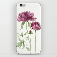 peony iPhone & iPod Skins featuring peony by Dao Linh