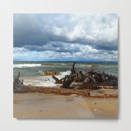 Sunshine on a Cloudy Day Metal Print