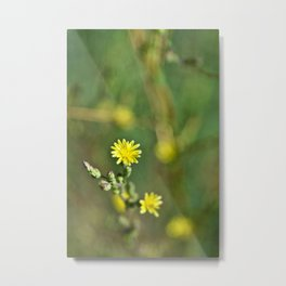 Golden flowers by the lake 1 Metal Print