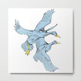 Two Grey Ducks Metal Print