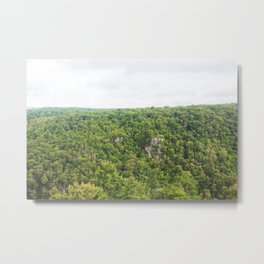 Allegheny Forests Metal Print