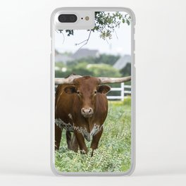 Brown and white Longhorn bull standing under tree Clear iPhone Case