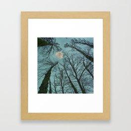 Magic moon over the trees Framed Art Print