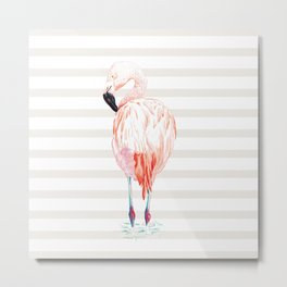 Flamingo Metal Print