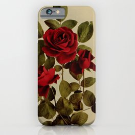 Vintage Print - Birds and Nature (1903) - Roses iPhone Case