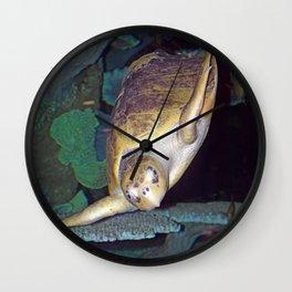 Kemp's Ridley Sea Turtle Wall Clock