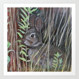 rabbit in field detail Art Print