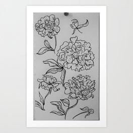 delicate pedals  Art Print