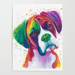 Rainbow Boxer Dog breeed Poster