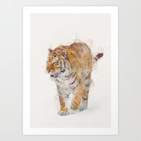tiger Art Prints featuring Tiger  by Daniel Taylor