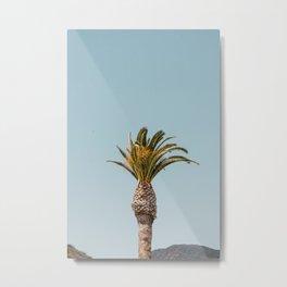 mountain palm Metal Print