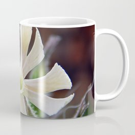 Tiny Flower on Prickly Plant Coffee Mug