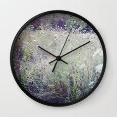 St. James Park Wall Clock